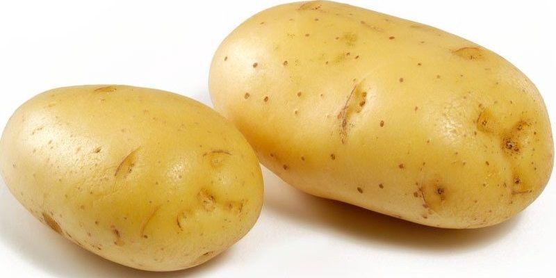Секрети приготування страв з картоплі