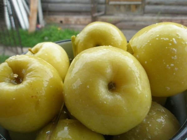 Квашені яблука з медом